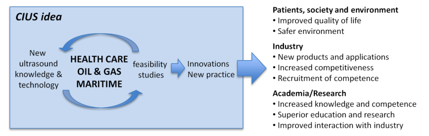 Chart illustrating the CIUS research framework.