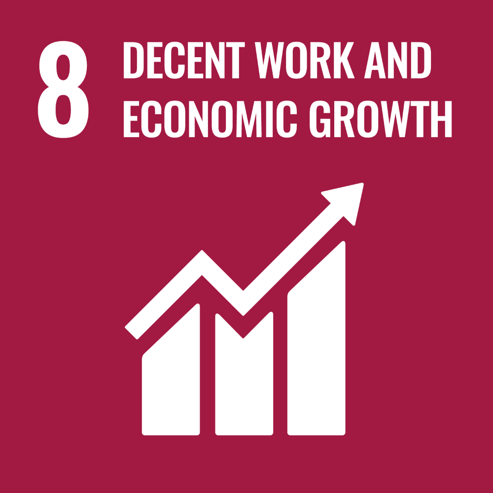 Icon - UN Sustainable Development Goal 8 - Decent work and economic growth. Link to Sustainable Development goal 8.