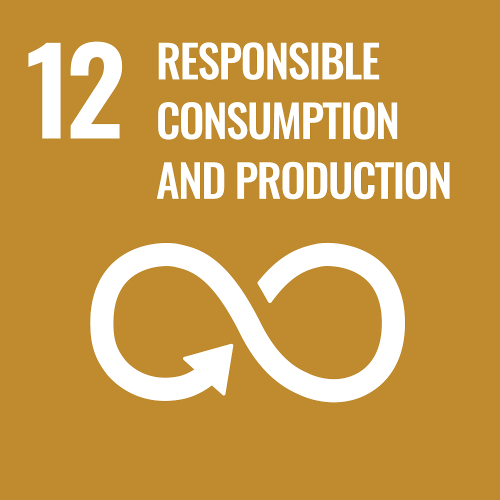 Icon - UN Sustainable Development Goal 12 - Responsible consumption and production. Link to Sustainable Development goal 12.