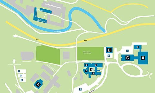 Map of campus. Illustration.