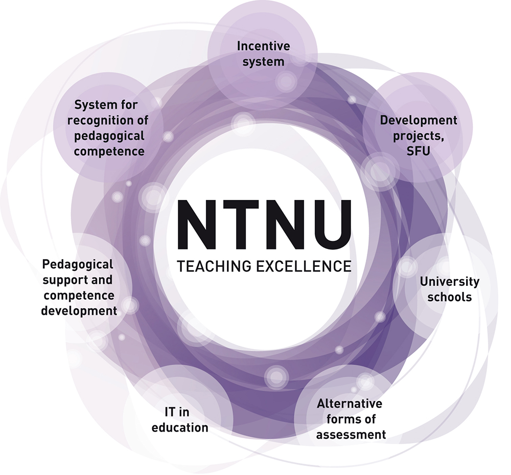 NTNU Teaching Excellence, model