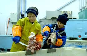Two kids cutting cod tongues on a trawler