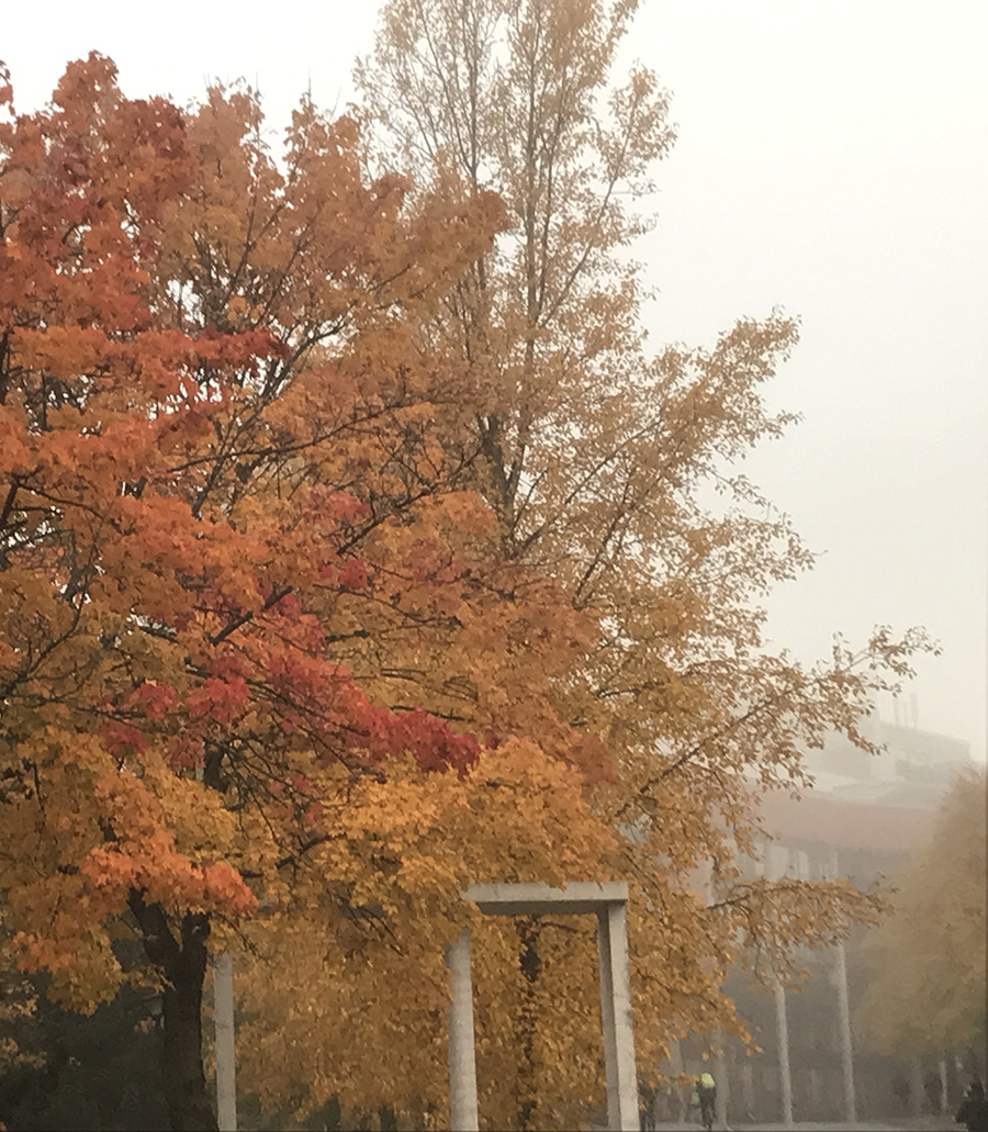 Autumn at NTNU - Realfagbygget from a distance. Photo