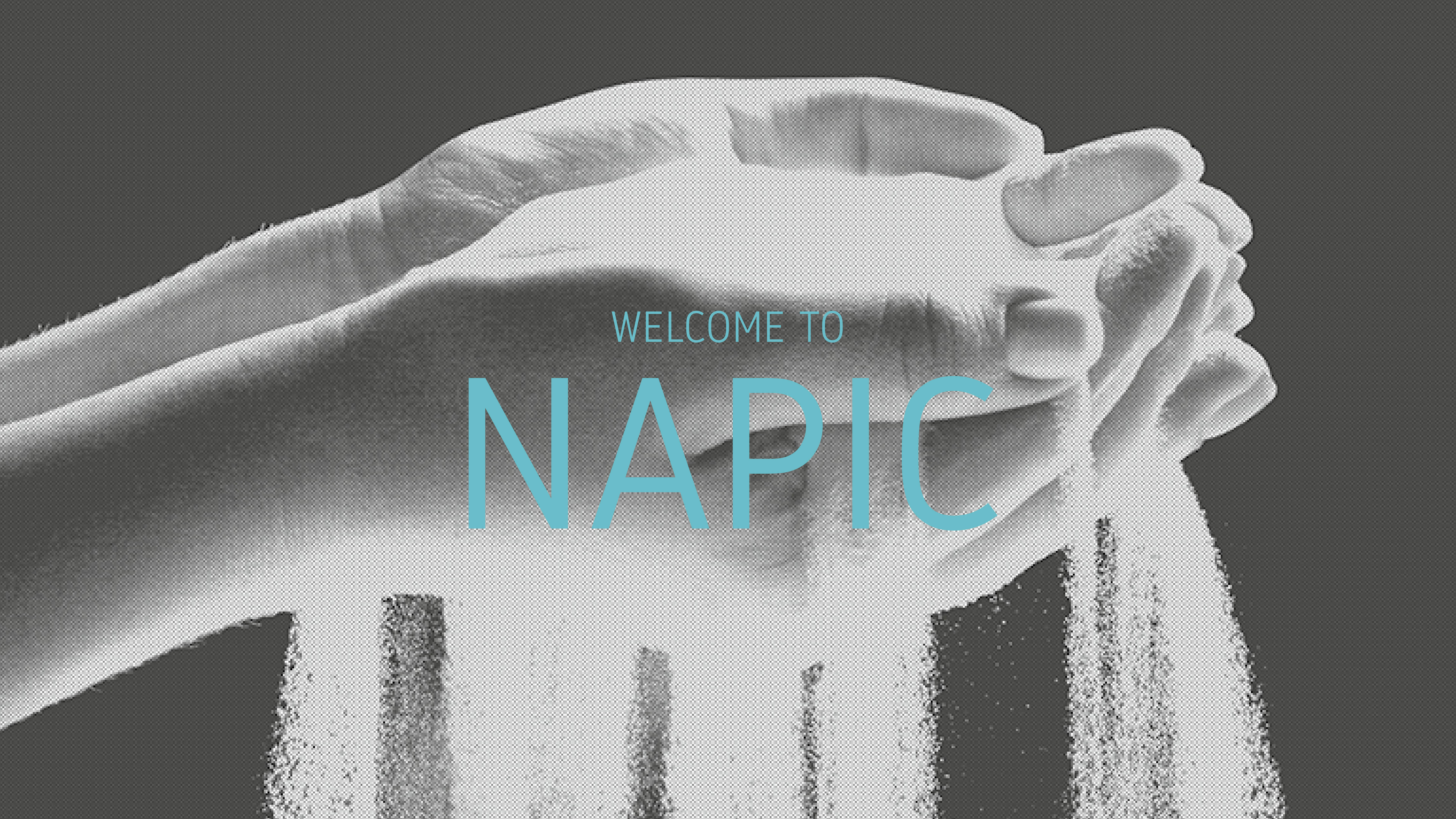 Welcome to NAPIC