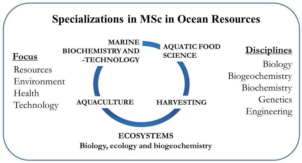 Master Of Science Msc In Ocean Resources 2 Years Ntnu Trondheim Ntnu