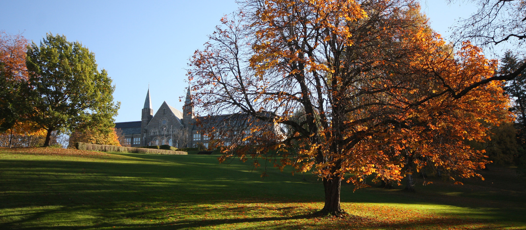 University campus park in fall, grass, orange trees and old stone building with spears.