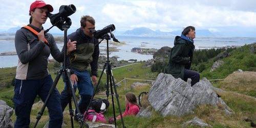 Birdwatchers looking in binoculars. Photo. Photo by: Henrik Jensen/NTNU