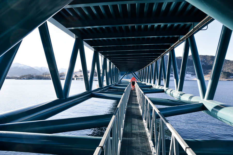 Below the bridge deck of the Bergsøysund Bridge. Photograph by NTNU/Gøran Loraas.