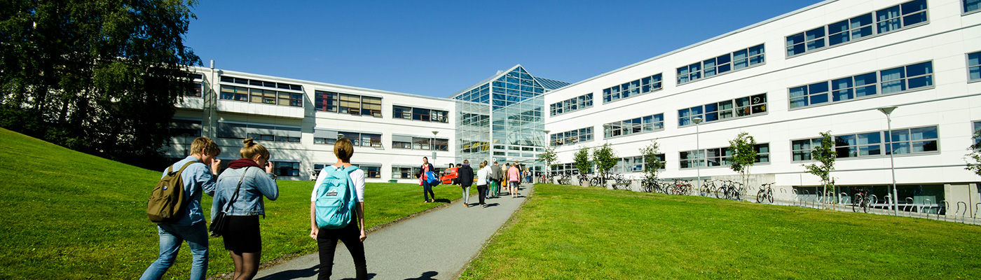 Dragvoll Campus