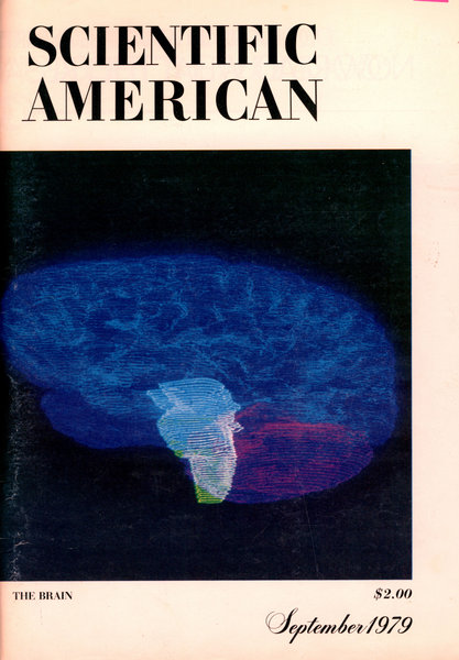 "The cover of the 1979 Scientific American ""Brain Issue"""