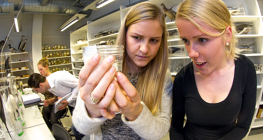 Students at the Department of Biology. Photo: Per Harald Olsen/NTNU