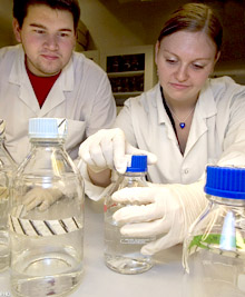 Two students conducting research - Cell and Molecular Biology - Photo: Per Harald Olsen