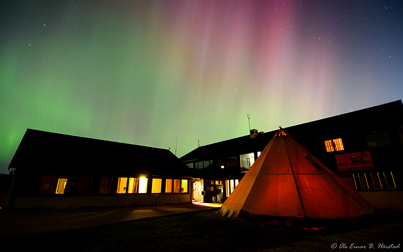 Villreinsentret, Dovre Mountains, Central Norway: The fieldstation at Hjerkinn showered in northern lights. Photo: Ole Einer Hårstad