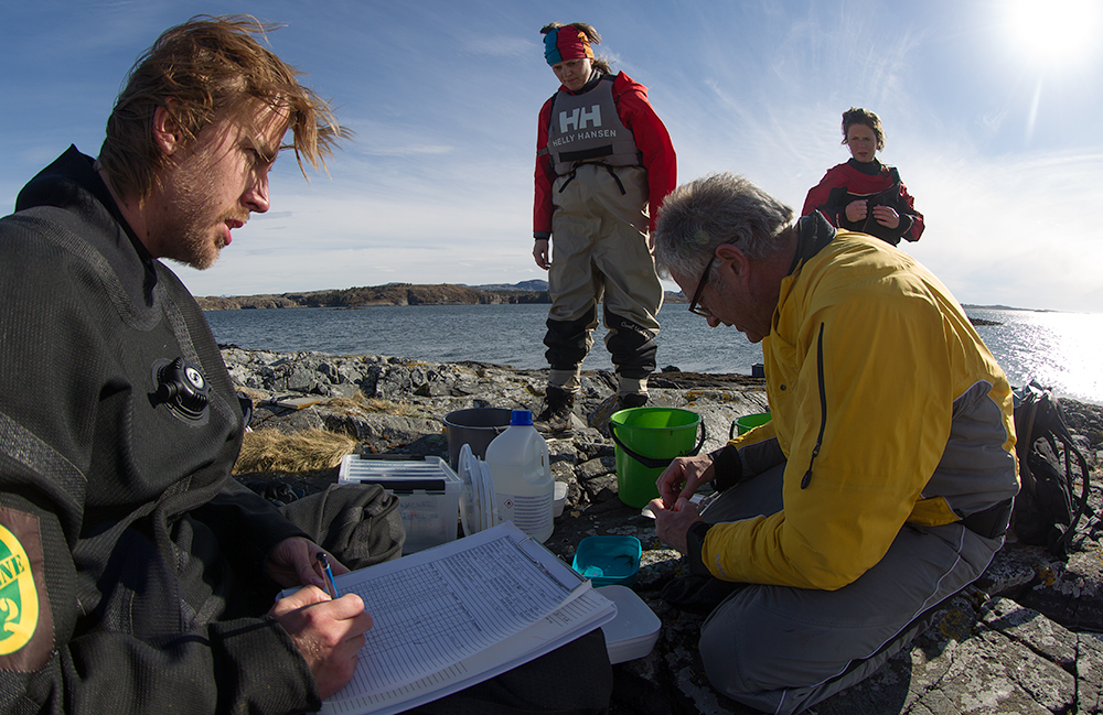 Field work in the Hitra archipelago. Photo