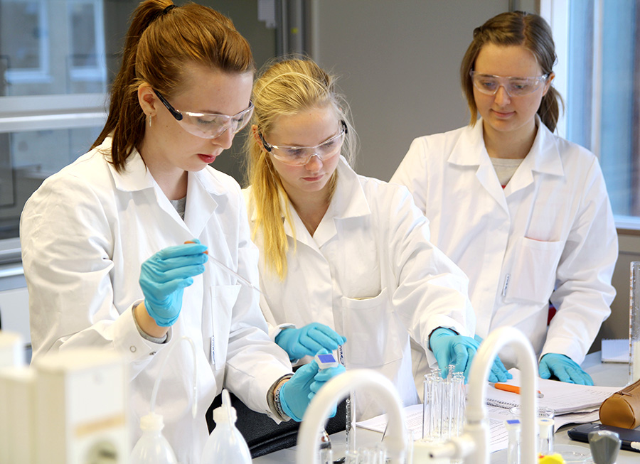 Bachelor students conducting experiments in the chemistry lab. Photo
