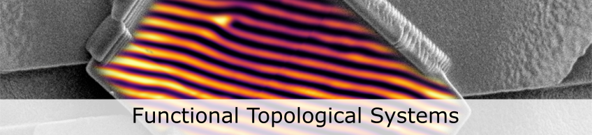 Picture of topological defects.