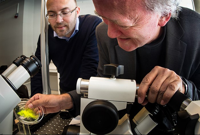 Physicists Paul Dommersnes, University of Paris, Diderot (left) and Jon Otto Fossum (NTNU), have come up with a way to make a novel capsule that could have wide applications in medicine and industry. Photo: Per Harald Olsen