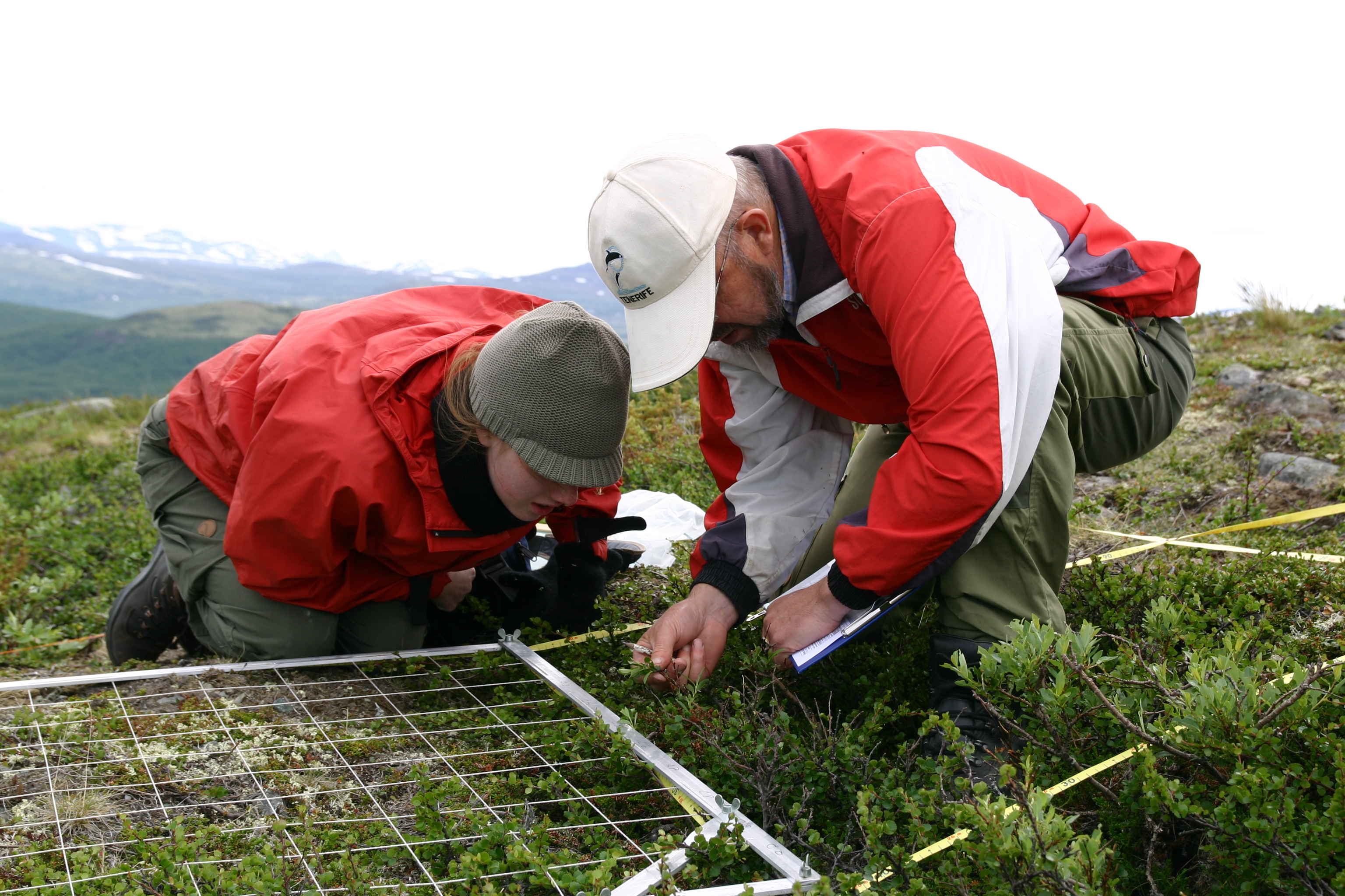 Researchers study mountain plots in the Dovre Mountains