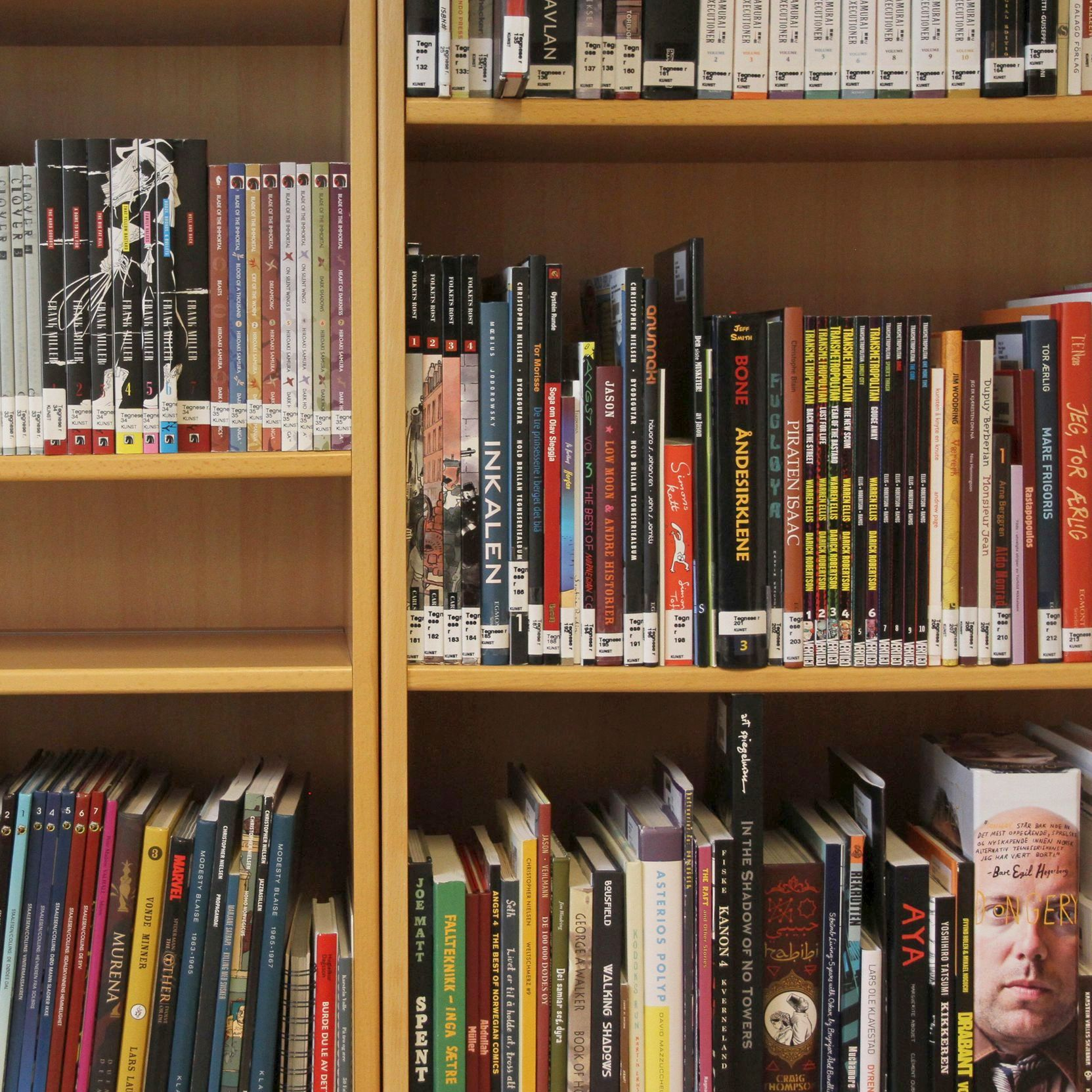 Graphic novels, art library
