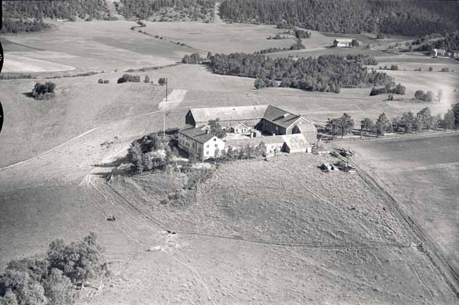 Air photo of Dragvoll Farm, summer of 1952