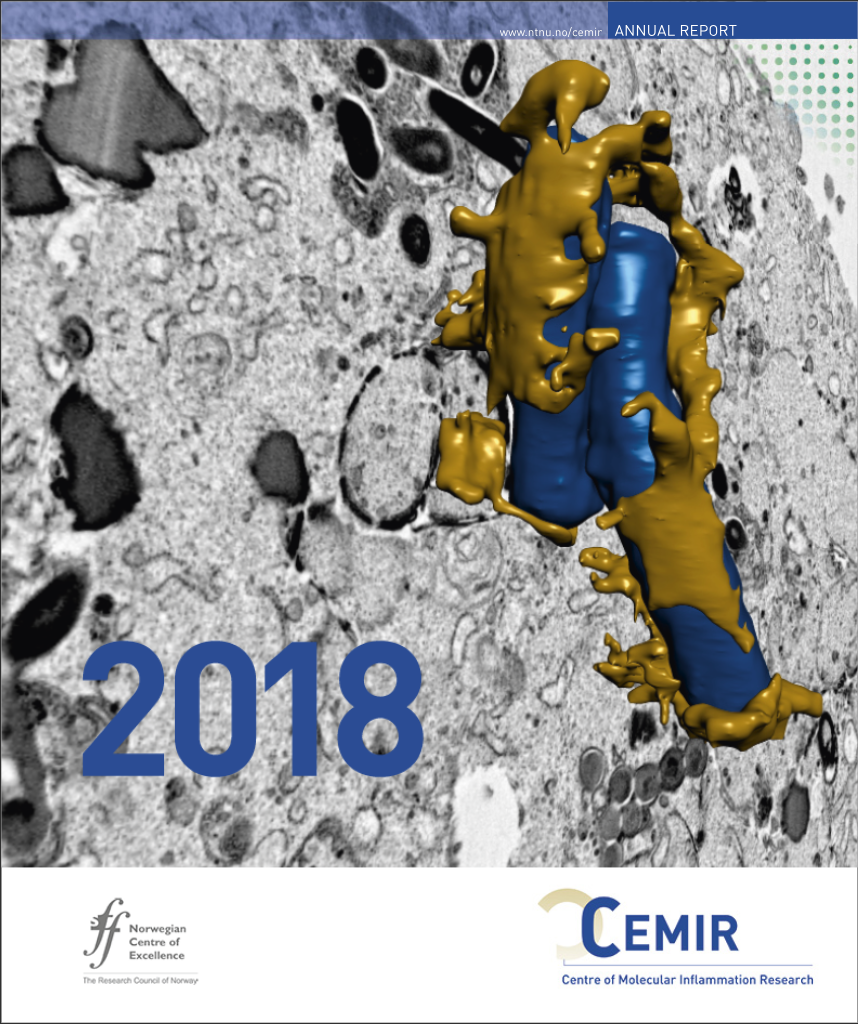Front cover, CEMIR annual report 2018