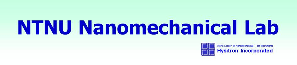 Logo nanomechanical lab