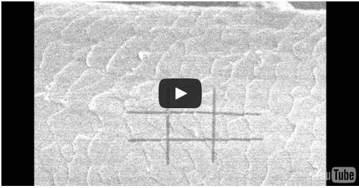 Picture of video showing noughts and crosses on a strand of hair