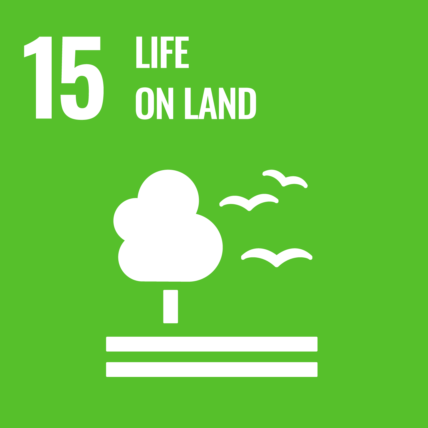 UN sustainable development goal number 15 Life on land. Link to goal number 15.