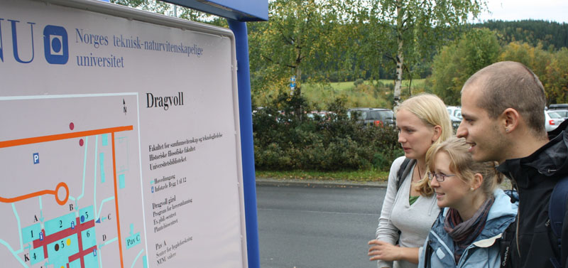 Students. Norwegian for Foreigners. Photo.