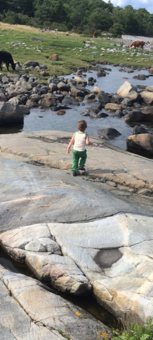 Child  walking on rocks by the sea